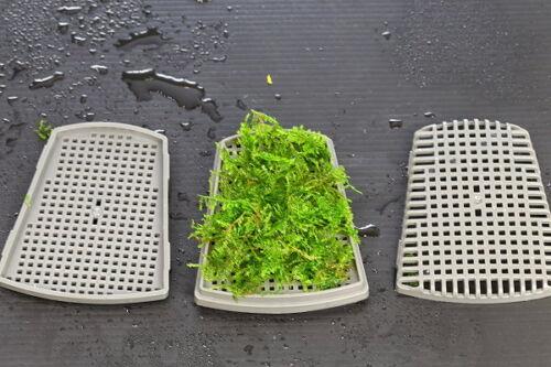 Aquarium Moss Water Aquatic Plants Cultivation Two-layer Platform Landscape L