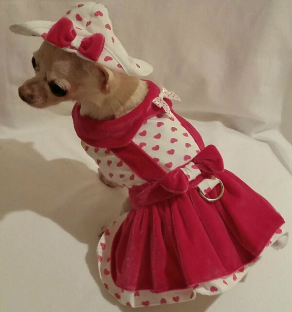 4 piece Harness set Miss Lady Love /dog dress/dog clothes/chihuahua/ xs,s,m, l