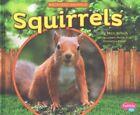 Squirrels by Capstone Press (Hardback, 2015)