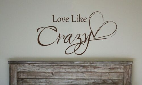 LOVE LIKE CRAZY Quote Vinyl Wall Decal Words Lyrics Lettering Saying Couple Room