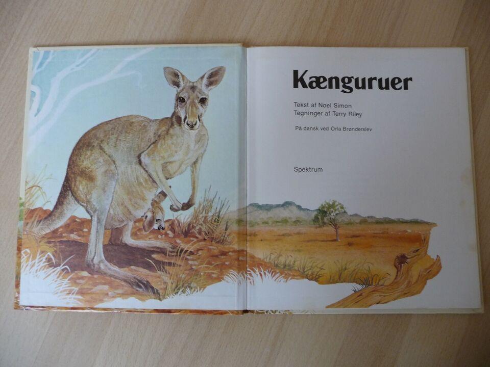 Kænguruer, Noel Simon