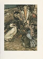 "1975 full Color Plate ""But Who Has Won, Alice in Wonderland"" by Arthur Rackham"