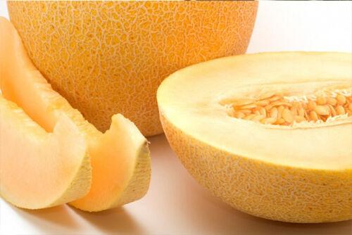 Melon Seeds Charlotte 1g Ukraine Ukrainian seeds Дыня Шарлотта Gardener/'s dream