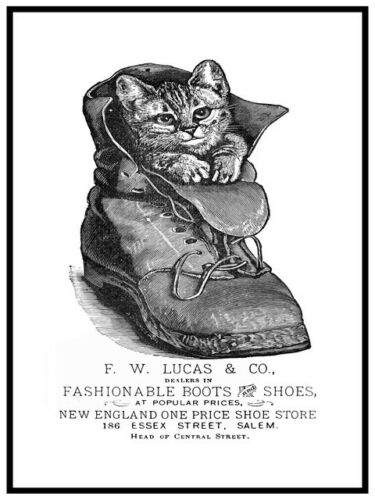 Vintage advertising Reproduction poster Cat in boot F W Lucas Wall art.