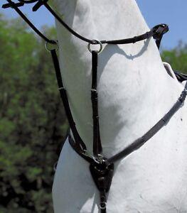"Pettorale elastico con martingala  ""Y""shaped elastic breastplate with martingal"