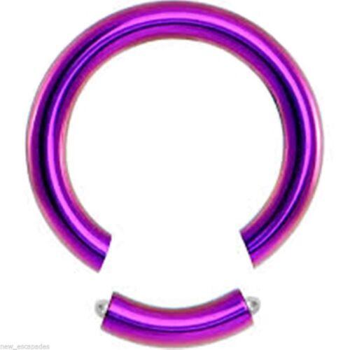 "Segment Captive Ring Heavy 8 Gauge 1//2/"" Titanium IP Purple Body Jewelry"