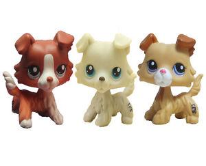 3 Un Hasbro Littlest Pet Shop Lps1542363 Figura Pelo