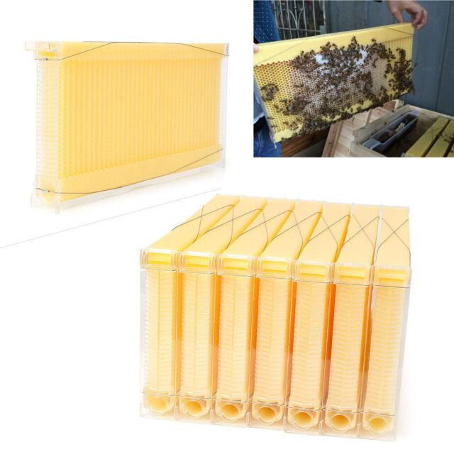 7Pcs Honey Bee Hive Frames Beekeeping Kit Bee Hive Auto Harvest Honey