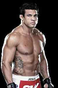 NEW-Vitor-Belfort-Ultimate-Vale-Tudo-MMA-DVD-039-s-Choose-Vol-1-2-3-4-6-7-8-UFC
