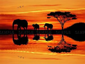 PHOTO COMPOSITION AFRICAN ELEPHANT SILHOUETTE SUNSET POSTER PRINT BMP10232