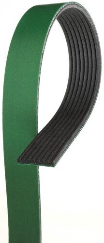 Serpentine Belt-FleetRunner Heavy Duty Micro-V Belt Gates K081265HD