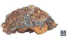 "Pallasite ""JEPARA"" - Fragment - 621 g - 106 x 66 x 68 mm"