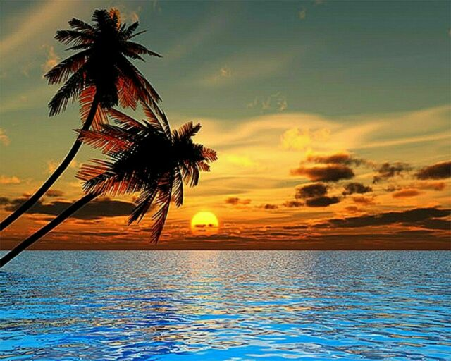 Beach Sunset Island Tropical Paradise Palm Trees Paint By Number DIY Painting