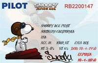Snoopy Pilot's License. Fridge Magnet. 2.5 X 4. Peanuts.....free Shipping
