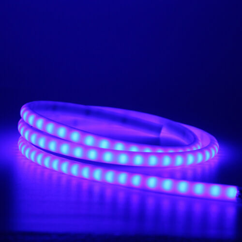 12V SMD 2835 Flexible LED Strip Waterproof Neon Lights Silicone Tube 1m-5m Lamp