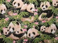 Panda Bear Baby Pandas Flowers Jungle Cotton Fabric Bthy