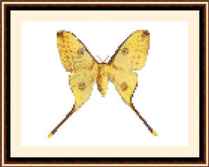 Butterfly-8528-Cross-Stitch-Kit