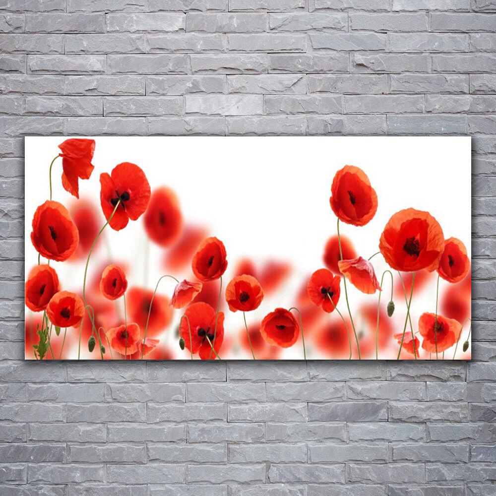 Verre Imprimer Wall Art Image 120x60 PHOTO COQUELICOTS Floral
