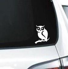 A109 owl hoot tree branch vinyl decal car sticker