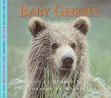 Baby Grizzly Bear (Nature Babies)