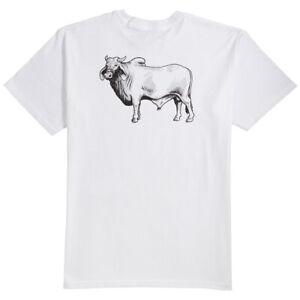 ANTI-HERO-COW-BACKSIDE-WHITE