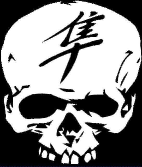 for Laptop, Wall, Car, etc. Skull Sticker Deftones Sticky Vinyl Decal