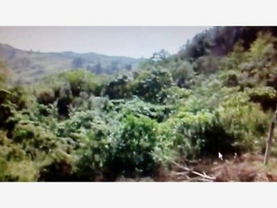 Finca/Rancho en Venta en Molango Centro