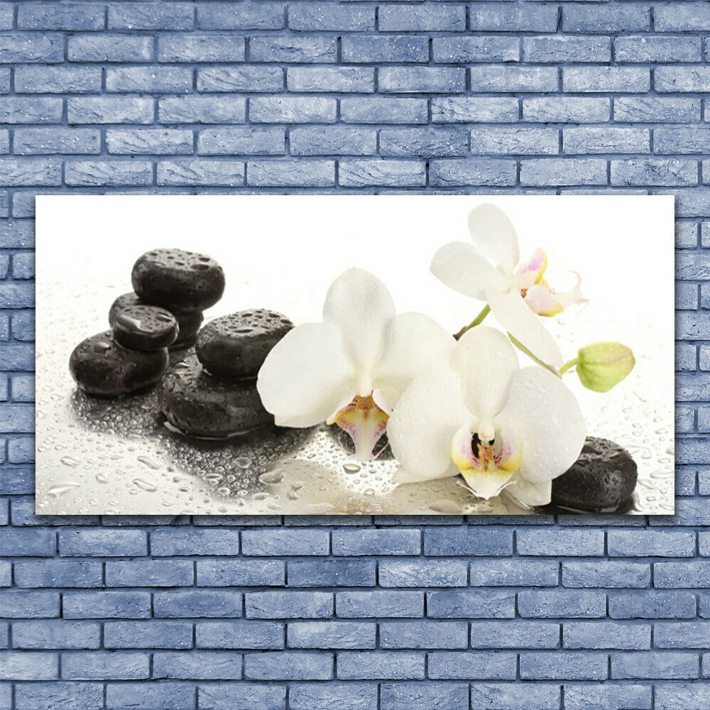 Print on on on Glass Wall art 140x70 Picture Image Flower Stones Floral 8aef33