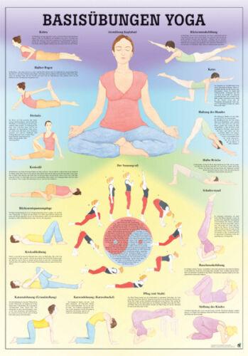 Yogishop Basisübungen Yoga Poster 24cm x 34cm NEU /& OVP