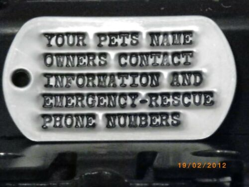 bark collars new id tag pet supplies pet id tag identification dog collar