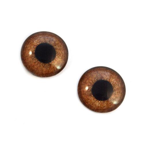 20mm Brown Griffon Bird Glass Taxidermy Eyes Animal Realistic Jewelry Art Supply