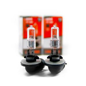 2 x 894 Poires PGJ13 Halogène Voiture Lampes 37.5 Watt Ampoule 12V