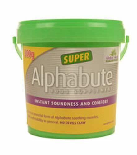 GLOBAL HERBS ALPHABUTE SUPER - 500 GM - GLB0053