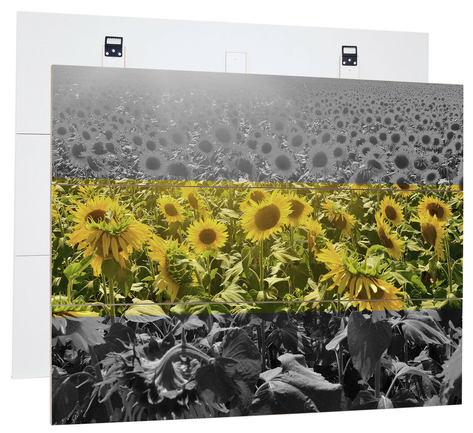 Beautiful SunfFaibleer Field B & W-MDF bois Picture in boisen Look Wall Decoration
