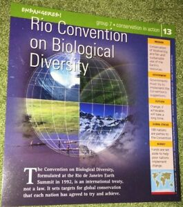 Endangered-Species-Animal-Card-Conservation-In-Action-Rio-Convention-On-Bio-13