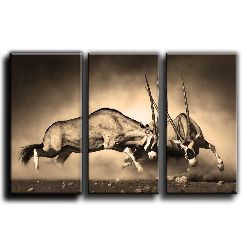 Les toile 22 imprimer encadrée wall art treble photo 22 toile galerie grade 3e69f2