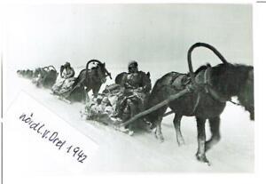 WW-2-Orel-Orjol-im-Winter-1942-Panzer-Propaganda-Kompanie-693-9