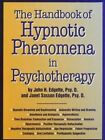 Handbook of Hypnotic Phenomena in Psychotherapy by John H. Edgette, Janet Sasson Edgette (Hardback, 1995)