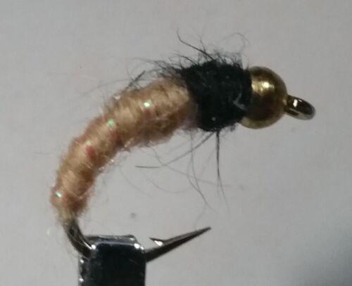 Trout 1 Dozen Nymph Wet Fly BH Caddis Larva Tan