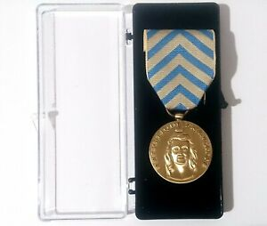 Medaille-Titre-de-Reconnaissance-de-la-Nation-TRN-Bronze-Patine-Armee-Francaise