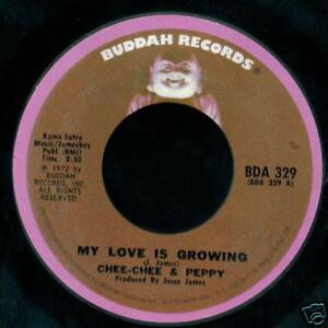 Chee-Chee-amp-Peppy-45-My-Love-Is-Growing-WE-Belong-to-Each-Other-MINT-1972-Buddah