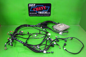 chevy 4 8 5 3 or 6 0 lsx complete stand alone efi engine wire rh ebay com ECM Wiring Harness ECM Wiring Harness
