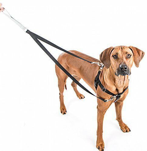 2 Hounds Freedom No Pull Dog Harness Includes Leash Multi Colors Sm to 2XL NWT