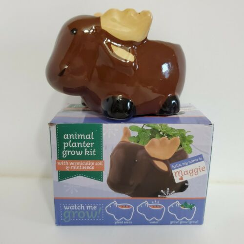 Maggy The Moose Ceramic Animal Planter Grow Kit Includes Soil Mint Seeds