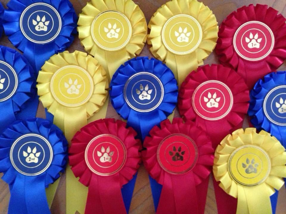 Single 1 Tier Paw Print pinkttes Prizes 1st - 3rd Dog Pet Show