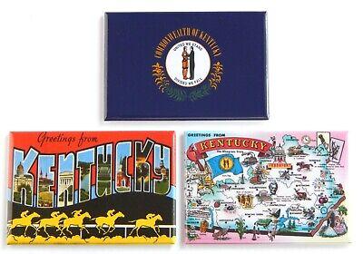 Greetings from Ohio FRIDGE MAGNET Set travel souvenir flag map