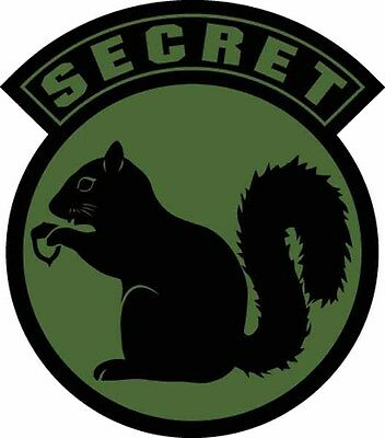 SECRET SQUIRREL Decal MILITARY SUBDUED Vinyl Sticker