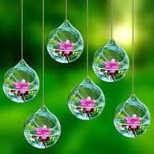 Glass Hanging Balls Flowers Planter Vase Terrarium Container  Landscape Bottle