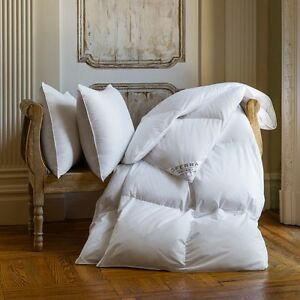 Sferra Cornwall Canadian White Goose Down Pillow In 900