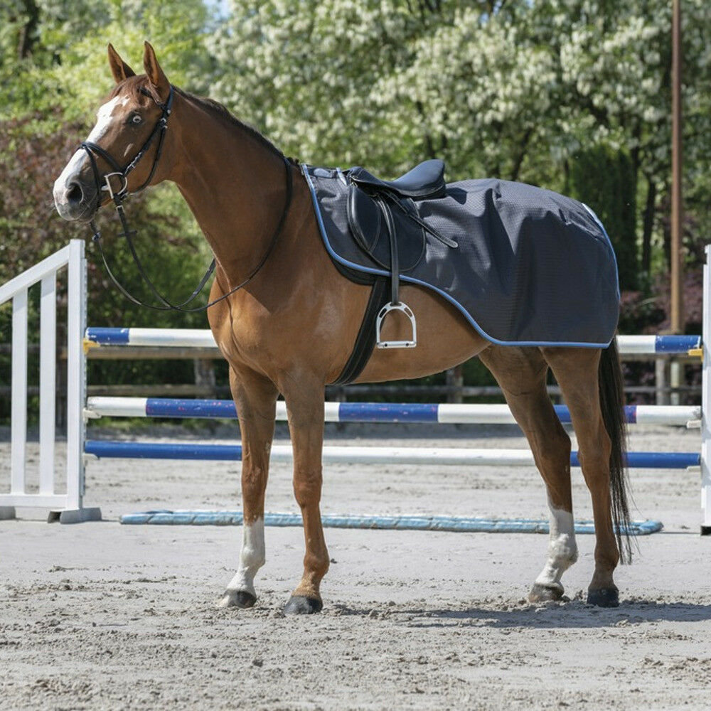 Equi-Thème  TYREX 1200 D  Kidney Blanket with Heat Feeding-grau Blau
